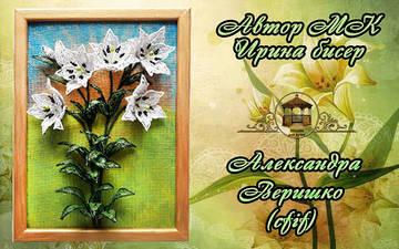 http://sg.uploads.ru/t/ZcpD9.jpg