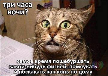 http://sg.uploads.ru/t/ZdVzF.jpg