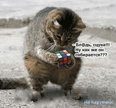 http://sg.uploads.ru/t/Zf8P0.jpg
