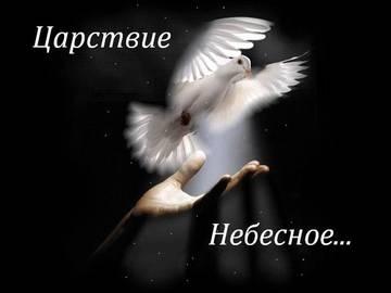 http://sg.uploads.ru/t/aAXmO.jpg