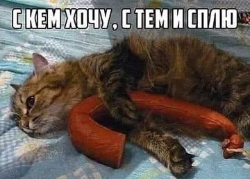http://sg.uploads.ru/t/aKU3I.jpg