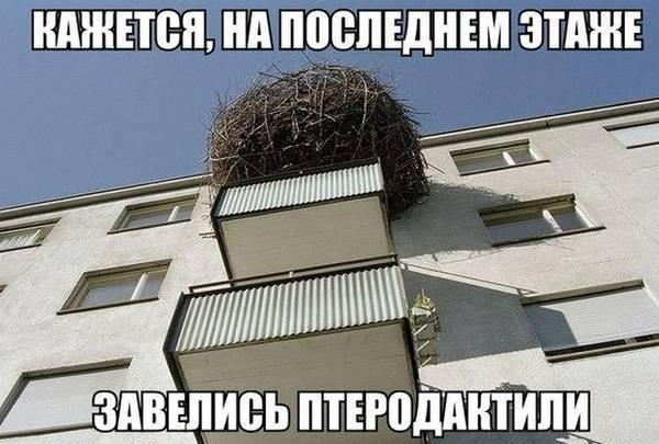 http://sg.uploads.ru/t/aLiqt.jpg