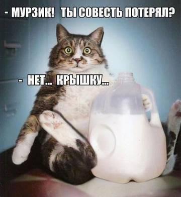 http://sg.uploads.ru/t/aukhG.jpg