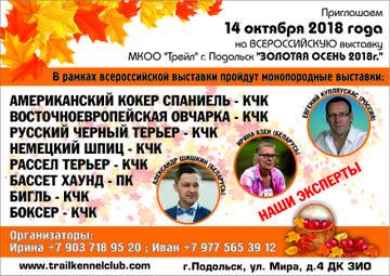 http://sg.uploads.ru/t/azxt9.jpg