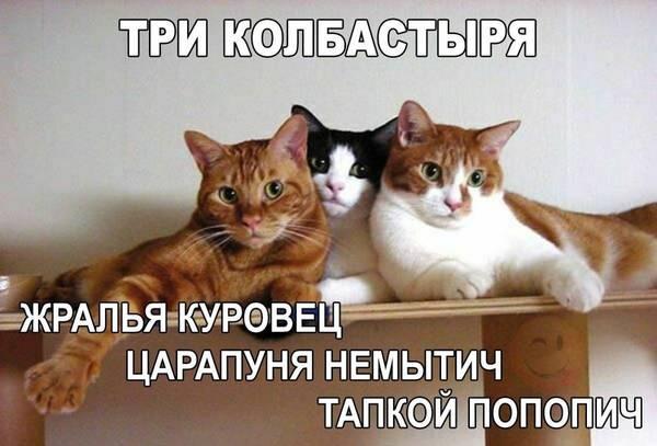 http://sg.uploads.ru/t/bBwOg.jpg