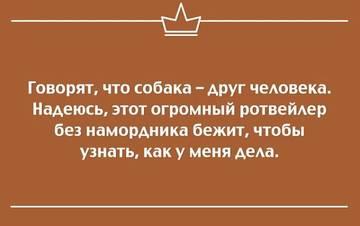 http://sg.uploads.ru/t/bYVOu.jpg