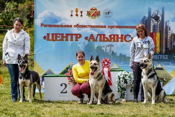 МОНО ВЕО КЧК+ 3 САС 10-11 июня г.Зеленоград BaNBE