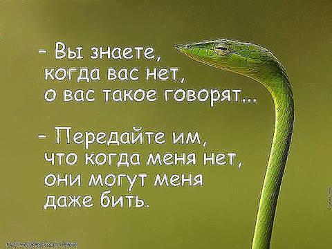 http://sg.uploads.ru/t/bcLgX.jpg