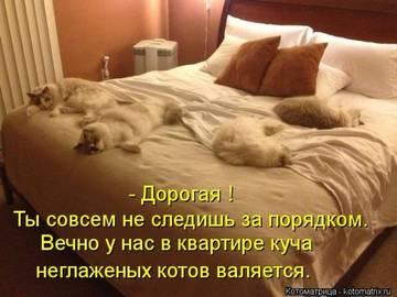 http://sg.uploads.ru/t/btBYF.jpg