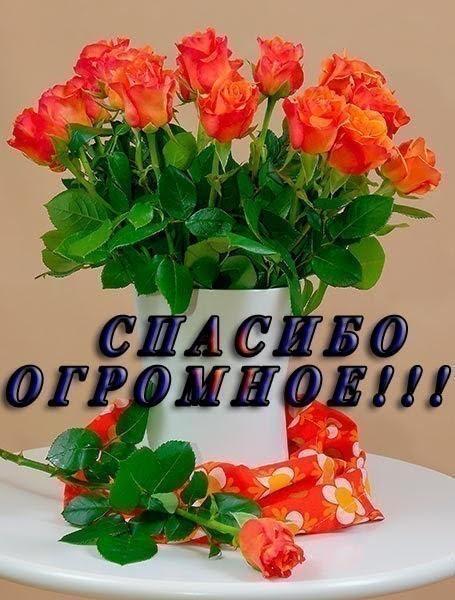 http://sg.uploads.ru/t/cJeTf.jpg