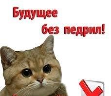 http://sg.uploads.ru/t/cPjvk.jpg