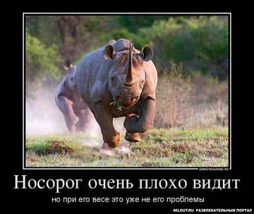 http://sg.uploads.ru/t/cdVav.jpg