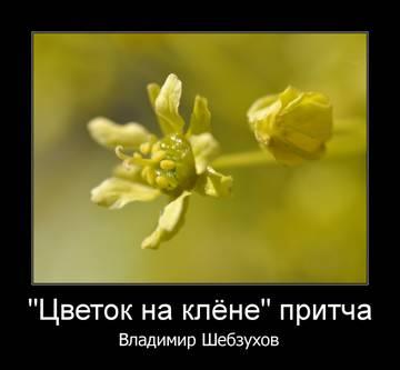 http://sg.uploads.ru/t/coUky.jpg