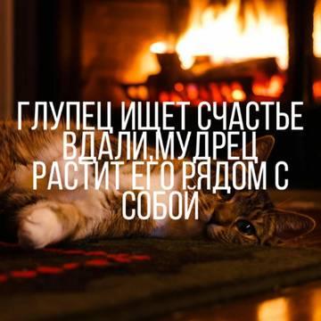 http://sg.uploads.ru/t/cuoEz.jpg