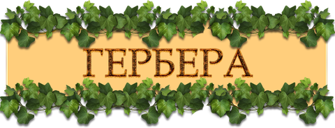 http://sg.uploads.ru/t/d2PbW.png