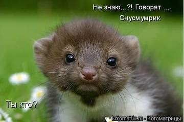 http://sg.uploads.ru/t/d9PG3.jpg