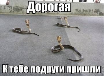 http://sg.uploads.ru/t/dFX9o.jpg
