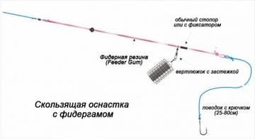 http://sg.uploads.ru/t/dr83U.jpg