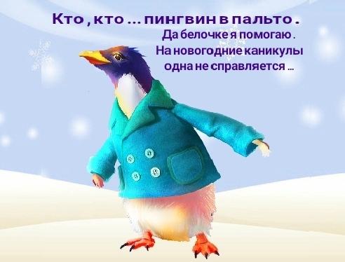 http://sg.uploads.ru/t/e31NB.jpg