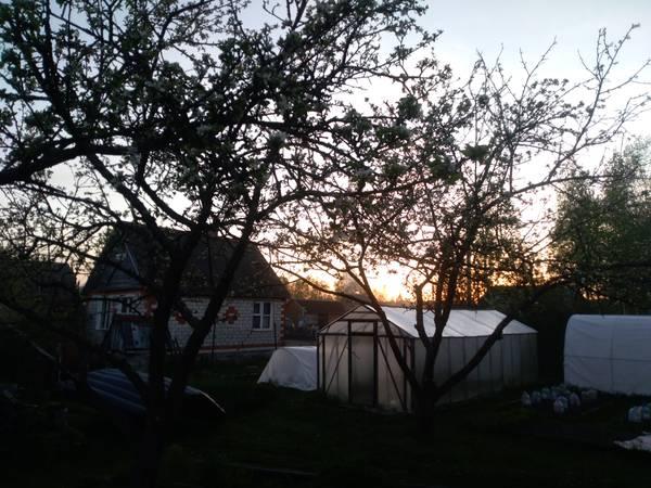 http://sg.uploads.ru/t/e7BjD.jpg