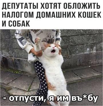 http://sg.uploads.ru/t/eQg8N.jpg