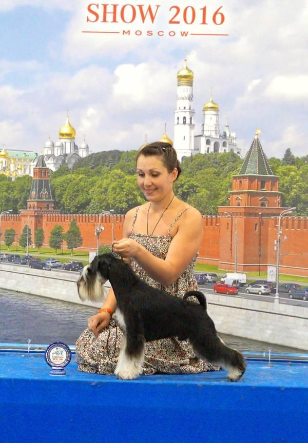 http://sg.uploads.ru/t/esyXE.jpg