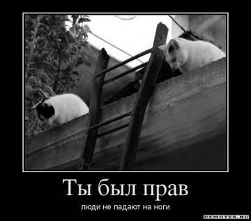 http://sg.uploads.ru/t/exjqM.jpg