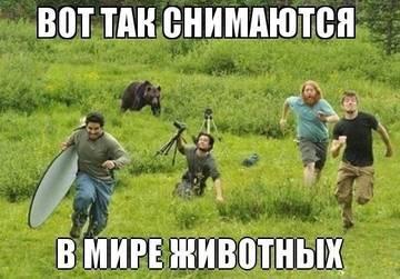 http://sg.uploads.ru/t/fLuKC.jpg
