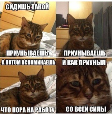 http://sg.uploads.ru/t/fd5Bv.png