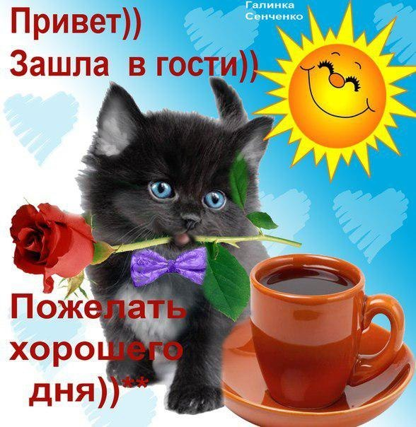 http://sg.uploads.ru/t/g3DNx.jpg
