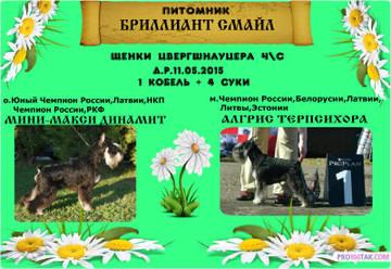 http://sg.uploads.ru/t/ghJB4.jpg
