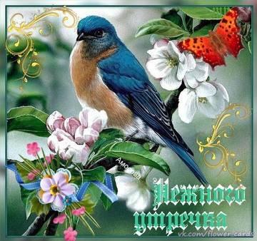 http://sg.uploads.ru/t/ghbi8.jpg