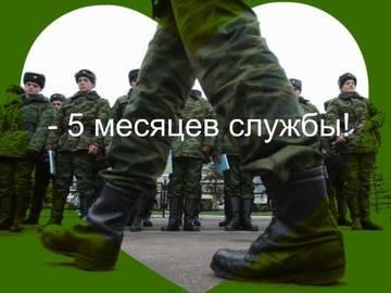 http://sg.uploads.ru/t/gn9YO.jpg