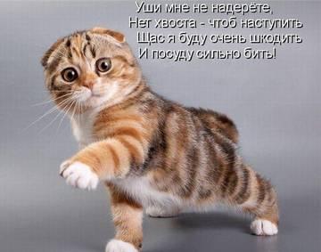 http://sg.uploads.ru/t/h3mBJ.jpg