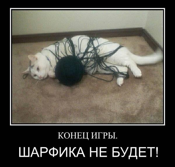 http://sg.uploads.ru/t/h9tTa.jpg