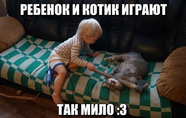 http://sg.uploads.ru/t/hHbpi.jpg