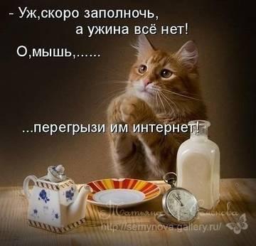http://sg.uploads.ru/t/hcq3D.jpg