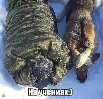 http://sg.uploads.ru/t/hja5S.jpg