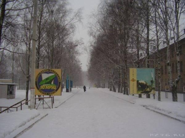 http://sg.uploads.ru/t/htkln.jpg