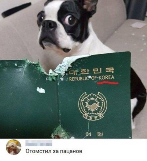 http://sg.uploads.ru/t/iAwBo.jpg