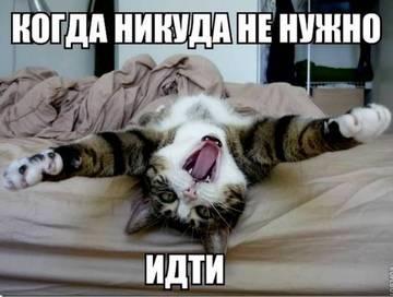 http://sg.uploads.ru/t/iHn2m.jpg