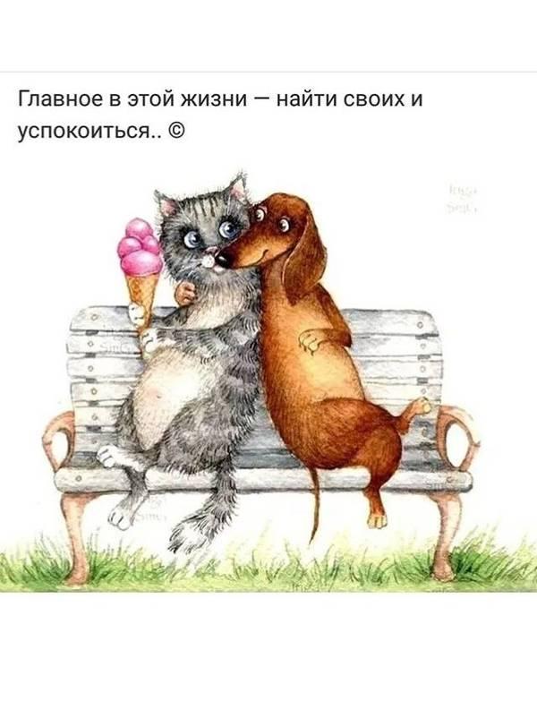 http://sg.uploads.ru/t/iMLg3.jpg