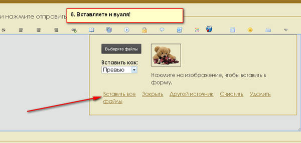 http://sg.uploads.ru/t/iQTEn.jpg