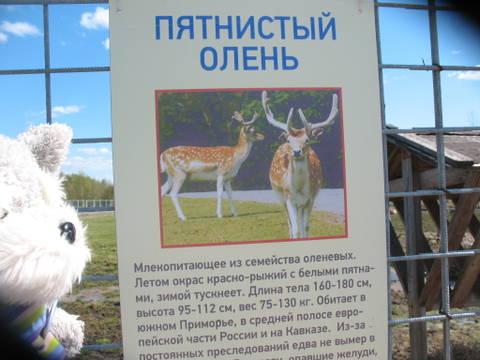 http://sg.uploads.ru/t/idKrc.jpg