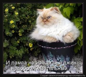 http://sg.uploads.ru/t/il35x.jpg