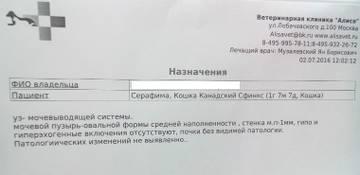 http://sg.uploads.ru/t/im01j.jpg