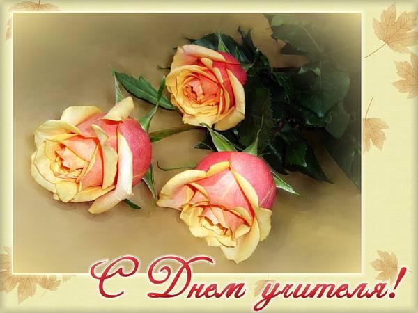 http://sg.uploads.ru/t/jLR8Y.jpg