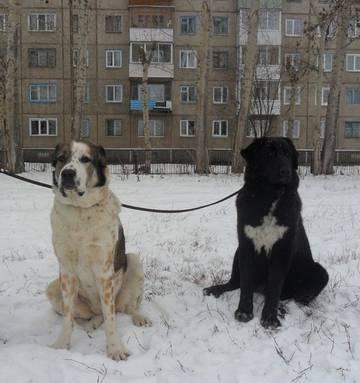http://sg.uploads.ru/t/jayMC.jpg