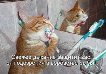 http://sg.uploads.ru/t/jcQR1.jpg