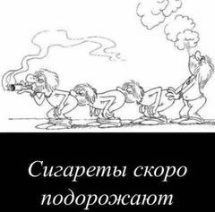 http://sg.uploads.ru/t/jlYdr.jpg
